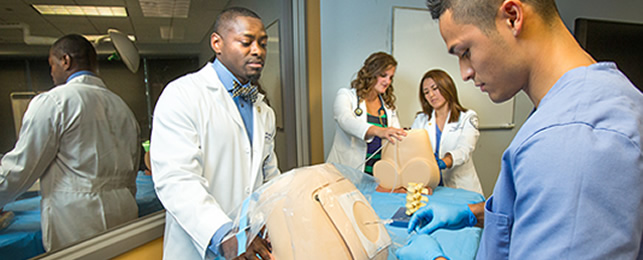 admission requirements for the anesthesiologist assistants program, Human Body